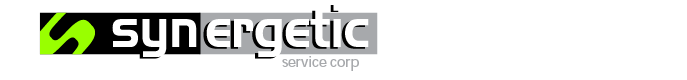 Synergetic Service Corp